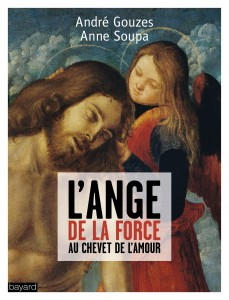Ange-force